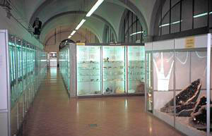 Overall view of the Florence Natural History Museum - Mineralogical Section.