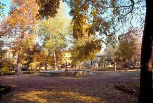 Giardini di firenze galleria for Giardino orto botanico firenze