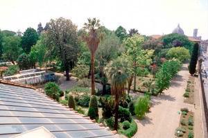 Museo di storia naturale di firenze orto botanico for Giardino orto botanico firenze