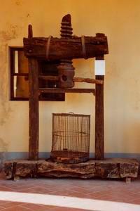 Torchio a vite mobile, sec. XVIII, Museo del Lavoro e della Civiltà Rurale di San Gervasio di Palaia.
