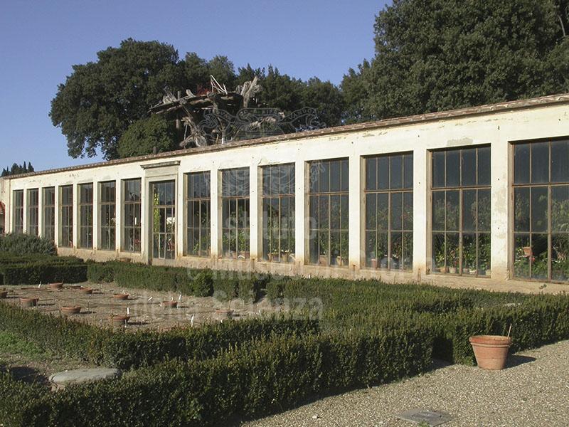 Immagine limonaia villa medicea la petraia firenze for Villa la petraia