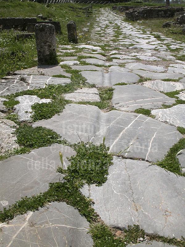 Strada romana con i solchi prodotti dal transito dei carri, Roselle.