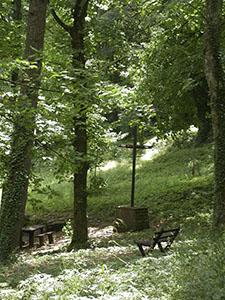 """Luogo di sosta all'interno dell'Arboreto """"Carlo Siemoni"""", Badia a Prataglia, Poppi."""