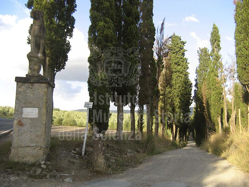 Immagine viale d 39 ingresso a villa mondeggi bagno a ripoli - Istituto gobetti bagno a ripoli ...
