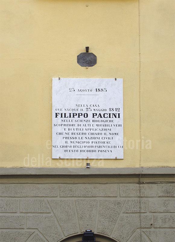 Lapide sulla casa natale di Filippo Pacini, Pistoia.