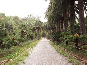 Giardino Botanico dell'Ottone, Portoferraio.