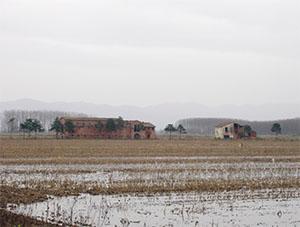 Riserva Naturale Padule di Fucecchio presso Anchione, Ponte Buggianese.