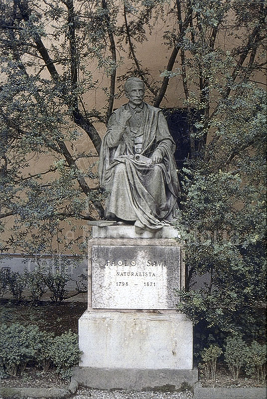 Monument to Paolo Savi by V. Consani, Botanical Garden of the University of Pisa.