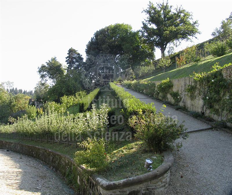 Immagine giardino di palazzo mozzi bardini a firenze i ter - Terrazzamenti giardino ...