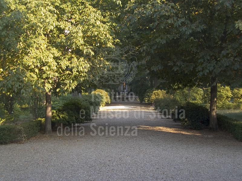 "Orto Botanico ""Giardino dei Semplici"", Firenze."