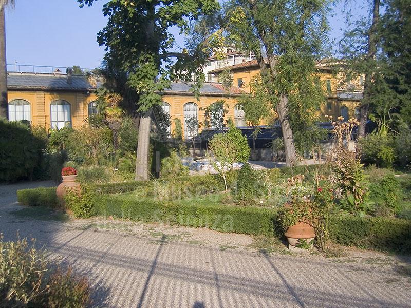 Immagine orto botanico giardino dei semplici firenze for Giardino orto botanico firenze