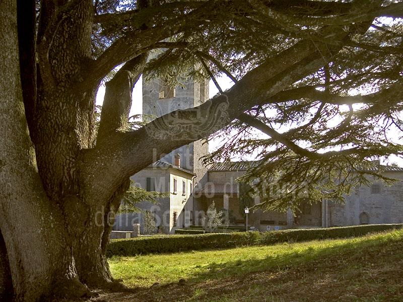 L'Abbazia di S. Lorenzo a Coltibuono e l'attiguo cedro monumentale, Gaiole in Chianti.