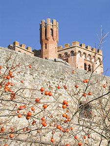 Il Castello di Brolio, Gaiole in Chianti.